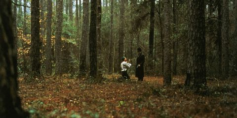 Woodland, Forest, People in nature, Tree, Natural environment, Nature, Northern hardwood forest, Old-growth forest, Natural landscape, Biome,