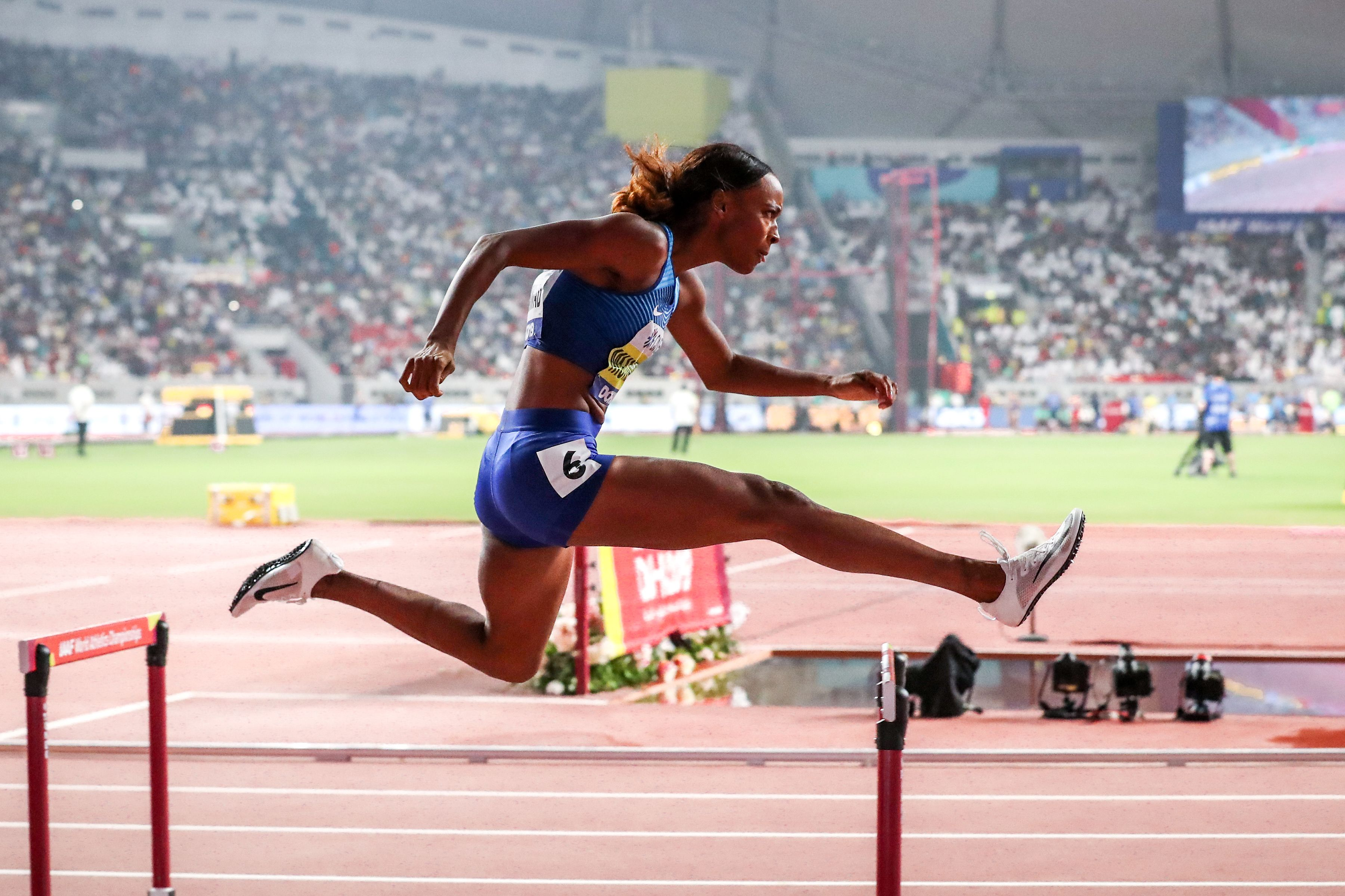 Image result for hurdle