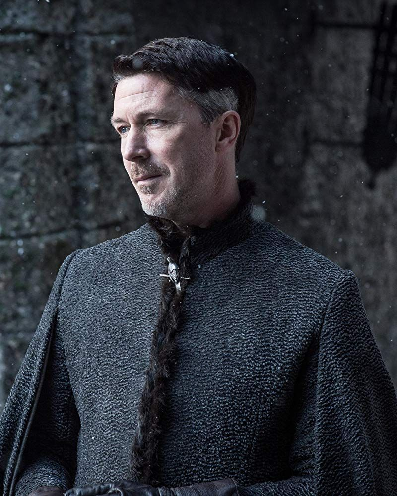 Aidan Gillen (and beard) A pointed beard with a touch of grey and a slender face with sly eyes ... casting sounds perfect to us.