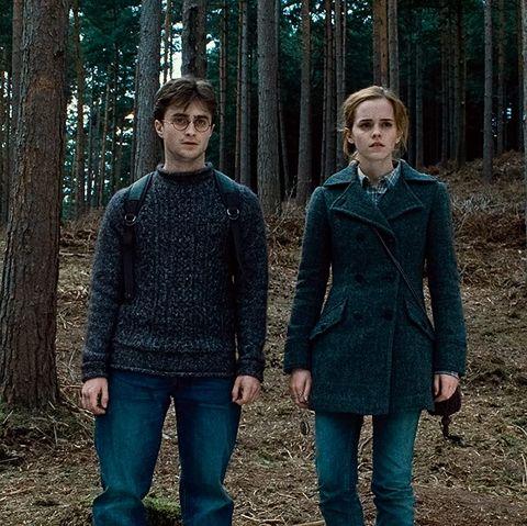 harry y hermiones