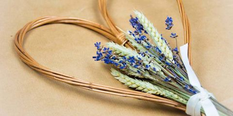 Flower, Feather, Plant, Lavender, English lavender, Fashion accessory, grape hyacinth, Porcelain,