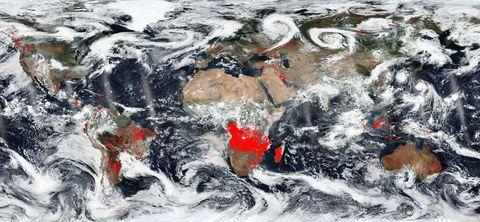 NASA Worldview - world fires - satellite image