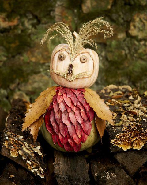 natural owl pumpkin halloween crafts for kids