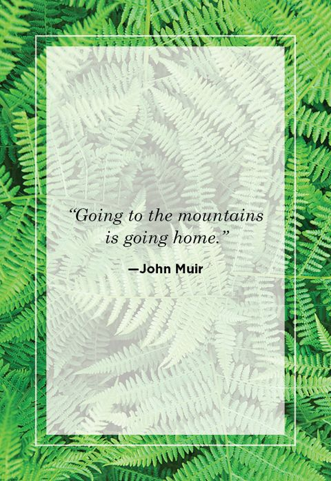 John Muir Nature Quote