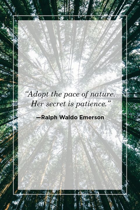 ralph waldo emerson nature quote