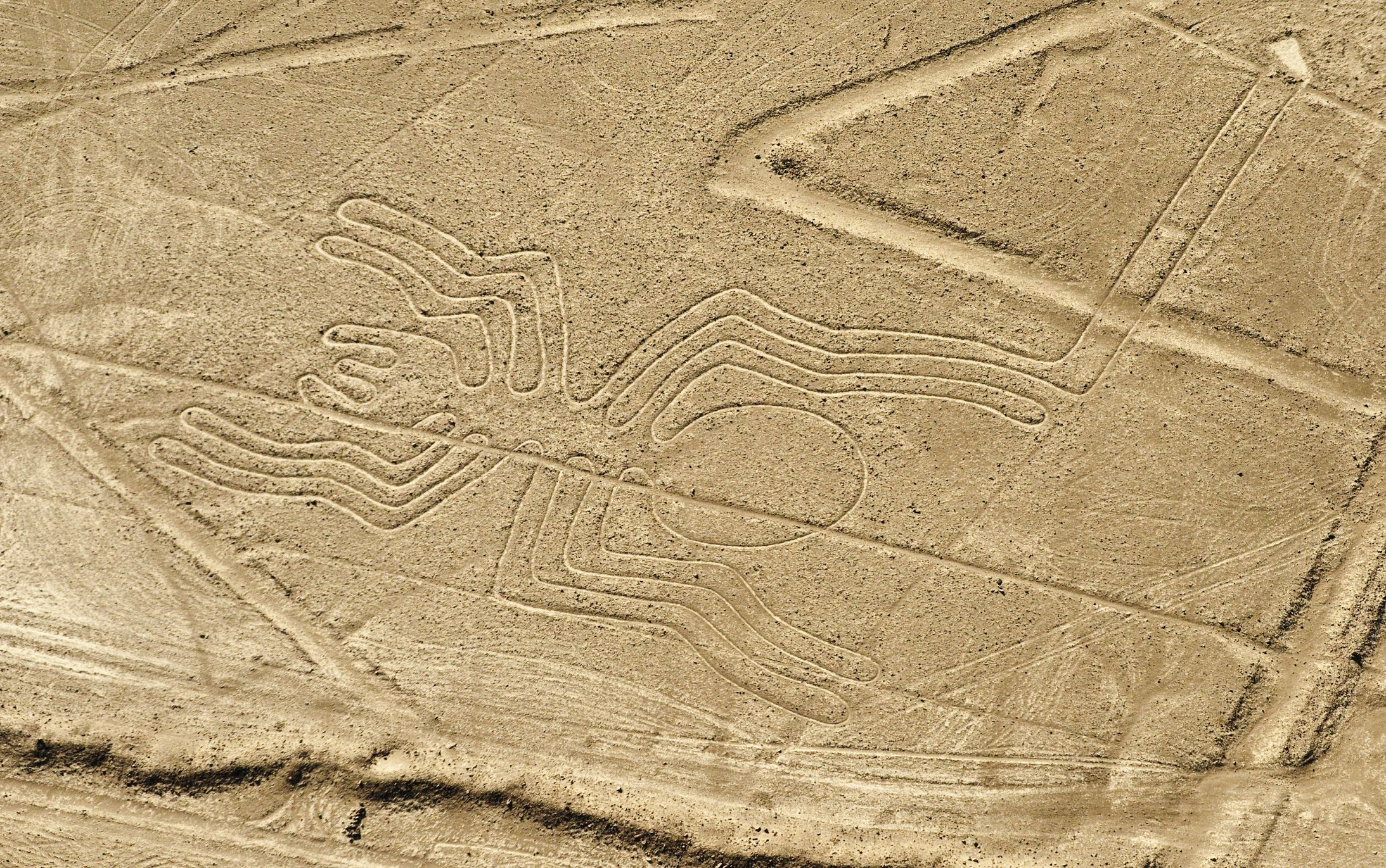 AI Discovered Nazca Lines That've Been Lost for 2,000 Years