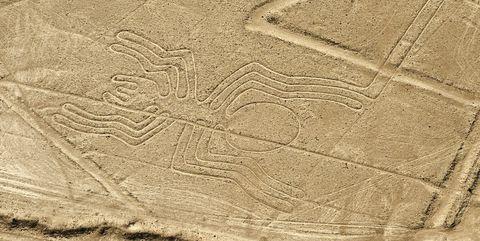 Nazca Desert, The Nazca (or Nasca) Lines geoglyphs, the Spider, UNESCO World Heritage Site