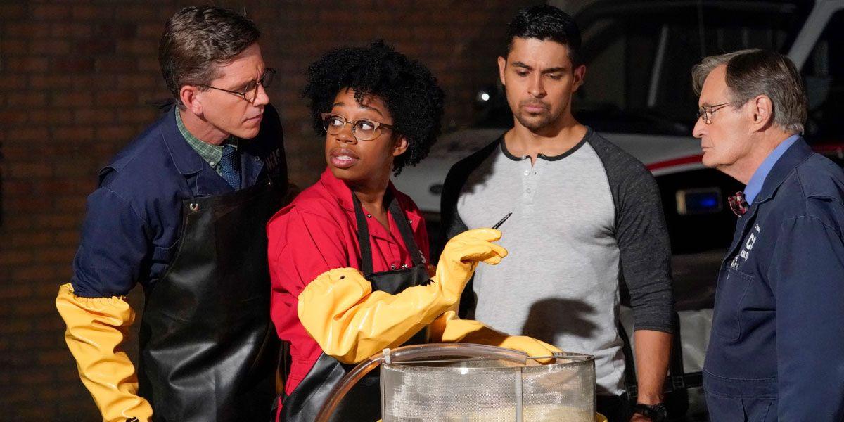 Ncis Star Diona Reasonover Talks Replacing Pauley