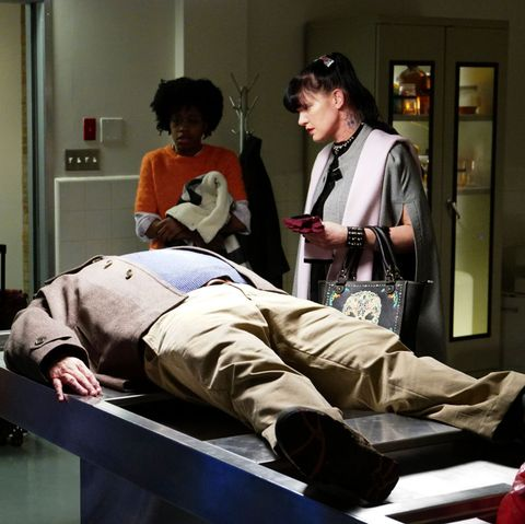 ncis diona reasonover and pauley perrette