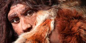 Hebben Neanderthalers ooit met elkaar gepraat?