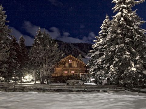 Snow, Winter, Sky, Tree, Night, Spruce, Mountain, Conifer, Fir, Alps,