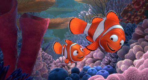 secuencia de la película