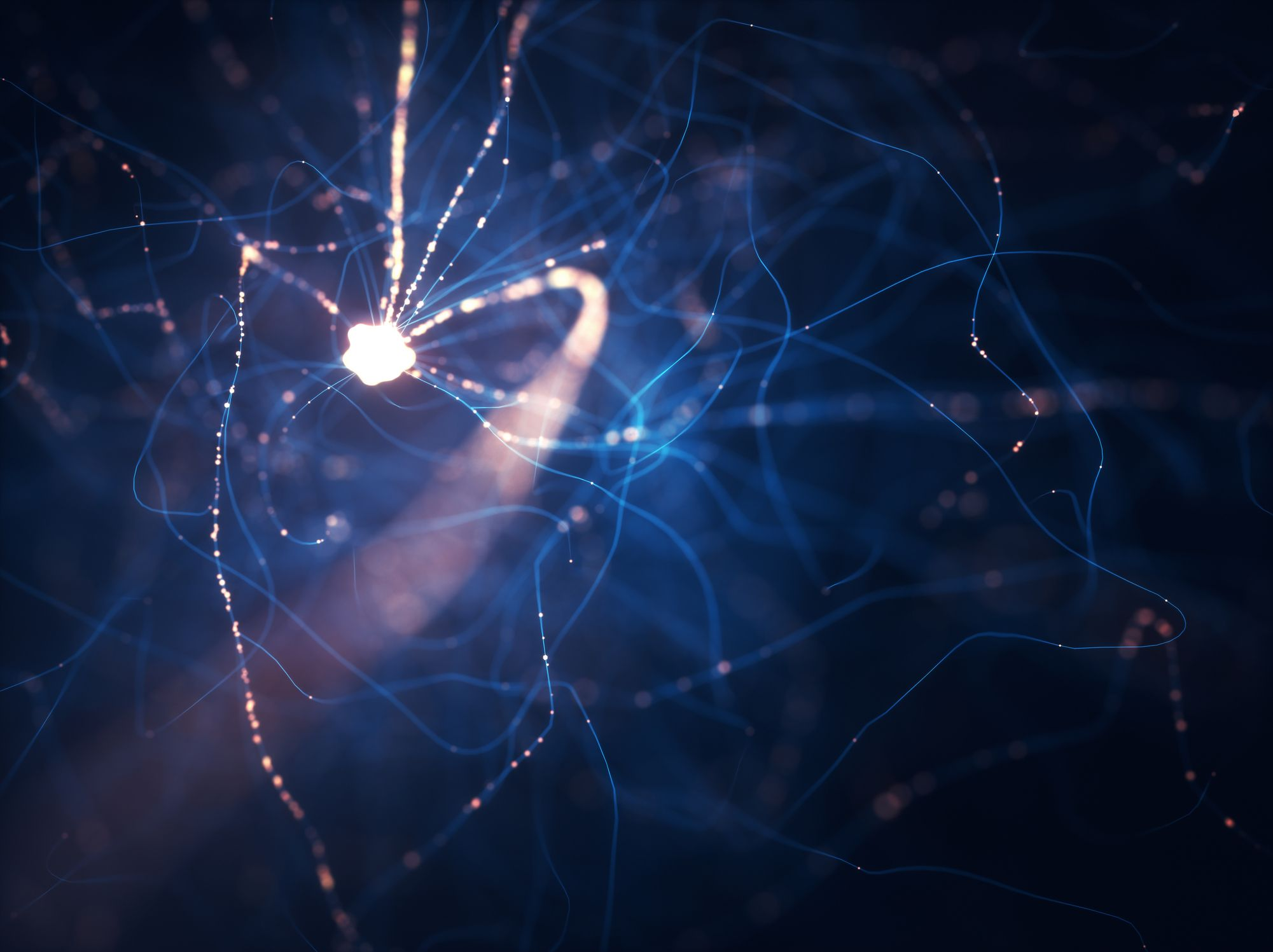 Scientists Figured Out How to Make Neural Networks 90 Percent Smaller—but Just as Smart