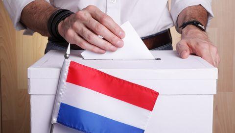 nederlanders naar de stembus