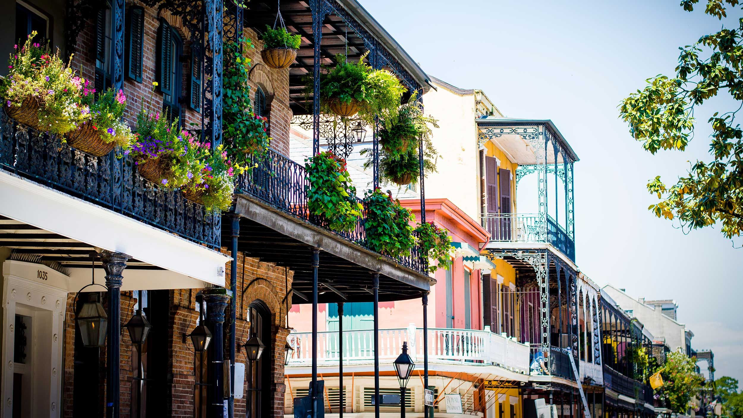 New Orleans: A definitive city guide