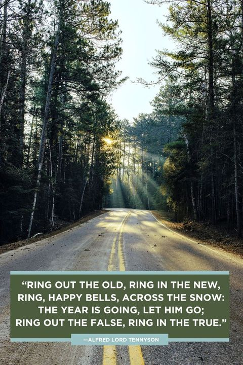New Year Quotes Tennyson