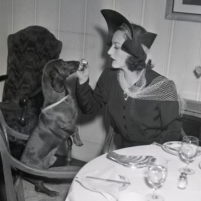 joan crawford feeding her dog