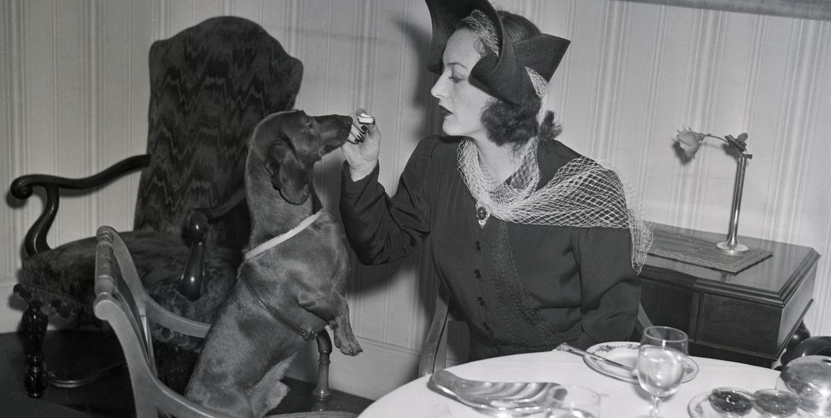 40 Photos of Old Hollywood Stars and Their Pets