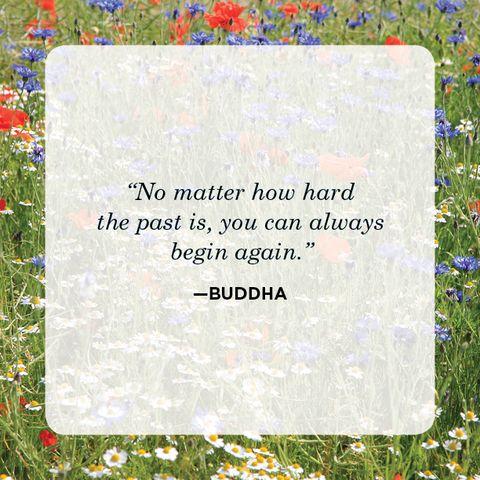 New Beginnings Quotes Buddha