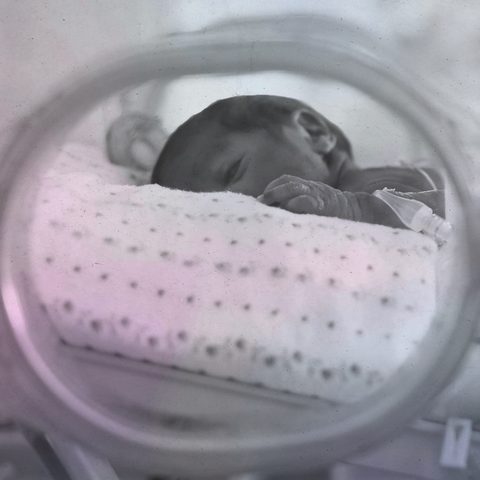 newborn baby in the nicu