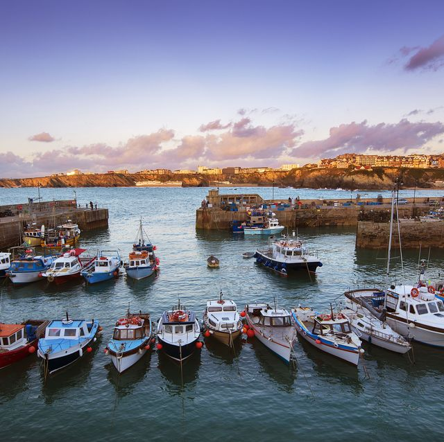 boats lined up in a harbour at sunset