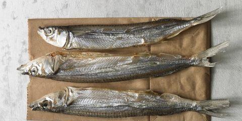 fish: plastic
