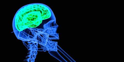 Joint, Organ, Electric blue, Smoke, Human anatomy, Brain, Science,