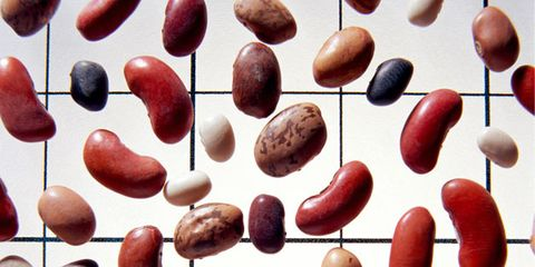 how to add beans to your diet