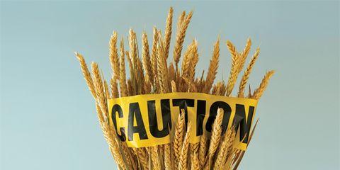 gluten-free diet information; pieces of wheat