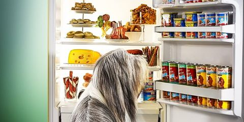 pets and supplements