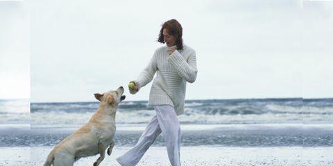 Human, Carnivore, Dog, Dog breed, Mammal, Coastal and oceanic landforms, People in nature, Ocean, Beach, Shore,