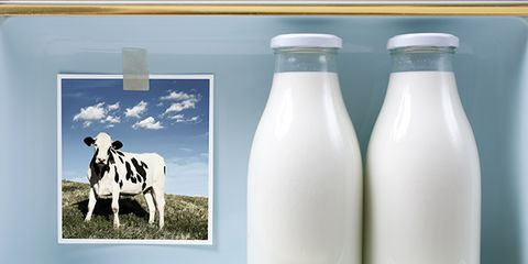 risks and benefits of raw milk