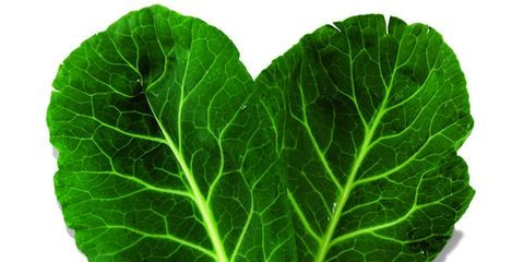 Green, Leaf, Leaf vegetable, Colorfulness, Vegetable, Herb, Annual plant, Produce,