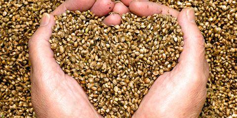 Ingredient, Food, Seed, Food grain, Flowering plant, Produce, Wheat, Nuts & seeds,