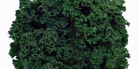 Green, Leaf, Leaf vegetable, Produce, Vegetable, Annual plant, wild cabbage, Herb, Liverwort,