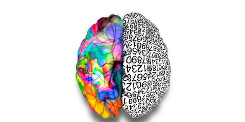 left brained or right brained