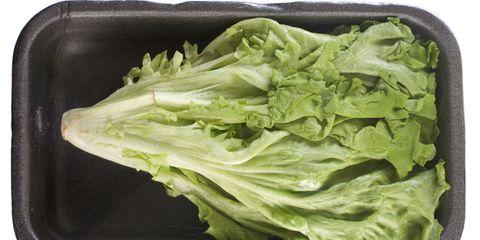 lettuce shrink-wrapped