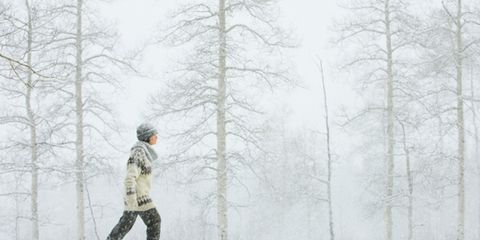 Human, Winter, Branch, Freezing, Mammal, Atmospheric phenomenon, Snow, Forest, Blizzard, Winter storm,
