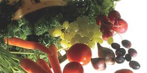 raw foods diet