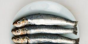 new threat to fish