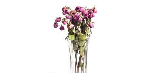 Flower, Petal, Bouquet, Cut flowers, Magenta, Glass, Flower Arranging, Floristry, Violet, Artificial flower,