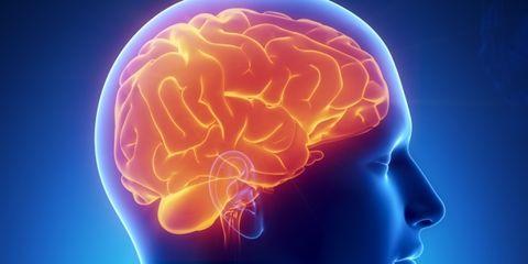 Chin, Forehead, Joint, Colorfulness, Brain, Orange, Jaw, Electric blue, Human anatomy, Organ,
