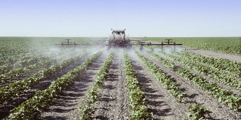 Farm and Pesticide Treatment