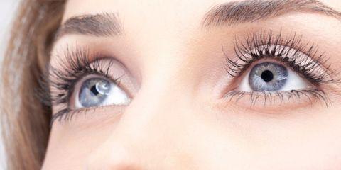 Brown, Eye, Skin, Eyelash, Eyebrow, Iris, Organ, Beauty, Photography, Close-up,