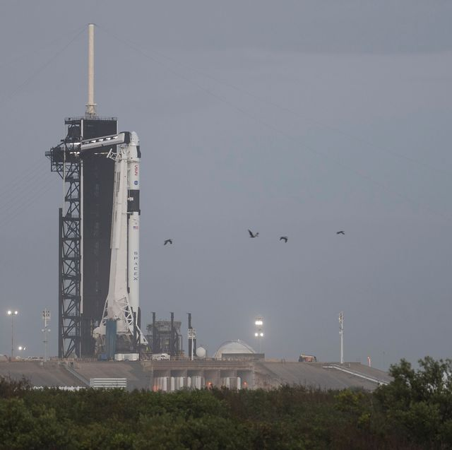 a spacex falcon 9 rocket with the company's crew dragon spacecraft onboard is seen on the launch pad at launch complex 39a after being rolled out overnight as preparations continue for the crew 1 mission, tuesday, nov 10, 2020, at nasa's kennedy space center in florida nasa's spacex crew 1 mission is the first operational mission of the spacex crew dragon spacecraft and falcon 9 rocket to the international space station as part of the agency's commercial crew program nasa astronauts mike hopkins, victor glover, and shannon walker, and astronaut soichi noguchi of the japan aerospace exploration agency jaxa are scheduled to launch at 749 pm est on saturday, nov 14, from launch complex 39a at the kennedy space center photo credit nasajoel kowsky