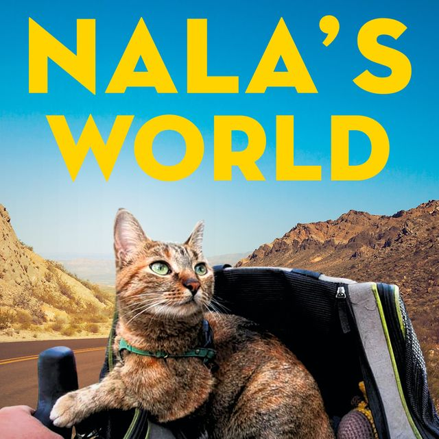 the cover of nala's world