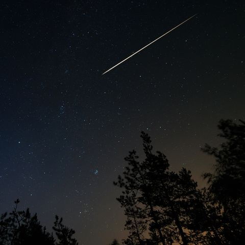 Night scene with starry sky and meteorite trail over forest