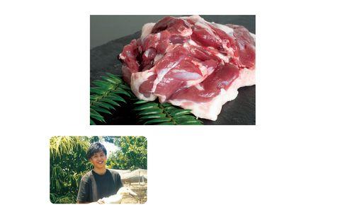 西崎ファーム かすみ鴨 胸肉・もも肉のセット