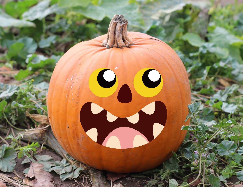 34 No Carve Pumpkin Ideas - Painted, Decorated Pumpkin Ideas