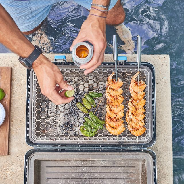 nomad portable grill and smoker